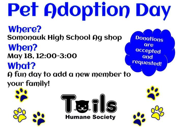 Pet adoption flyer